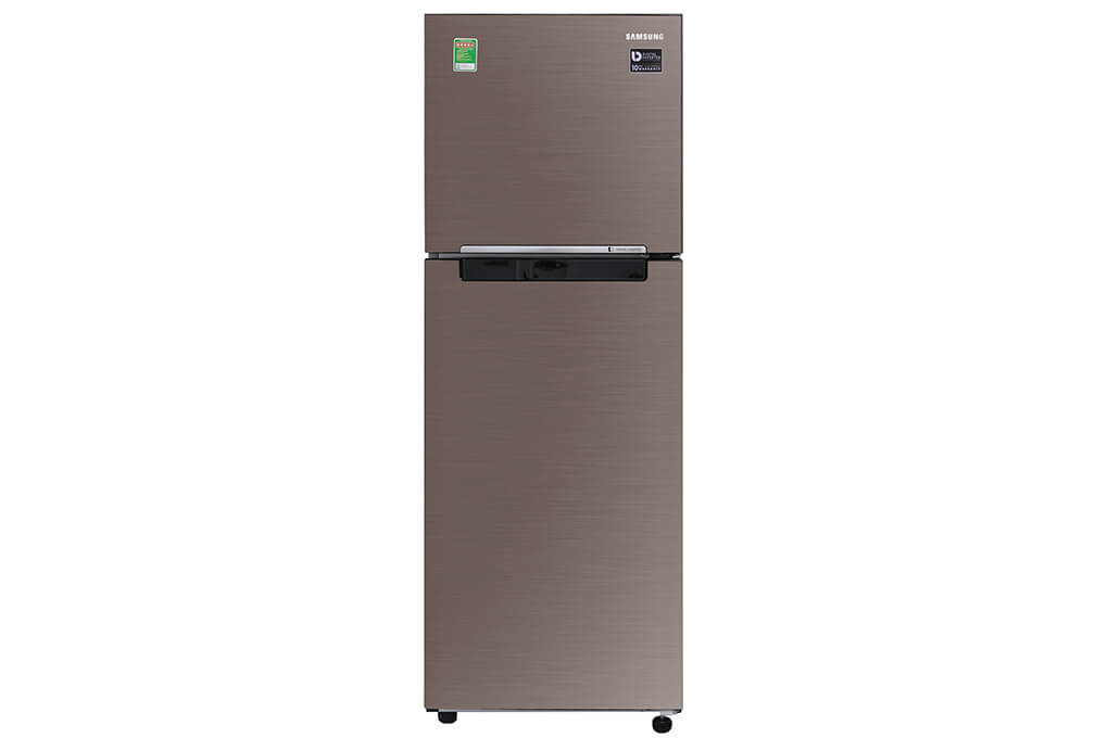 Tủ Lạnh Samsung Inverter 236 Lít RT22M4040DX/SV